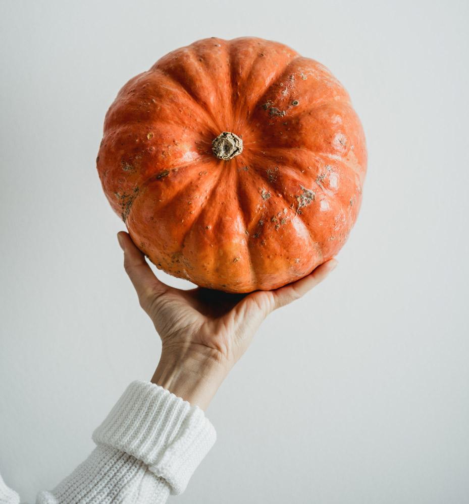amino animo organic ingredients pumpkin vegan protein πρωτεΐνη κολοκυθόσπορου